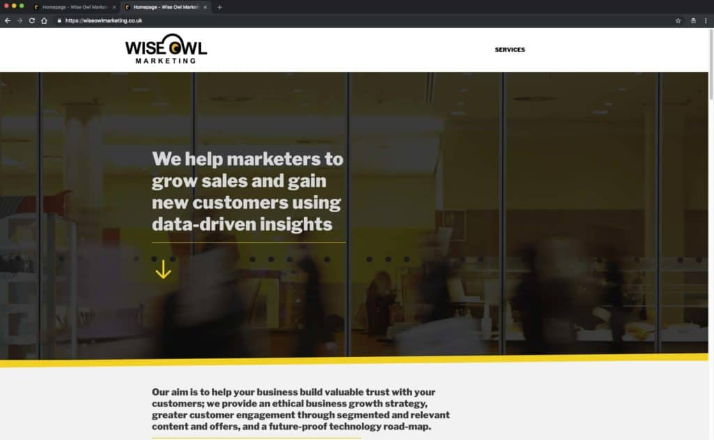 Wise Owl Marketing homepage