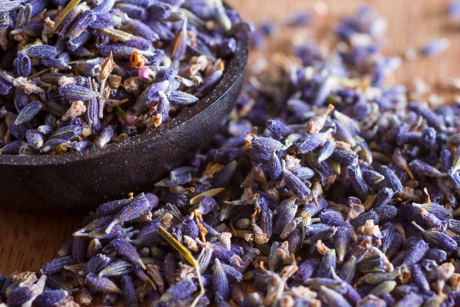Free downloads from Piccia Neri. Dried lavender flowers.