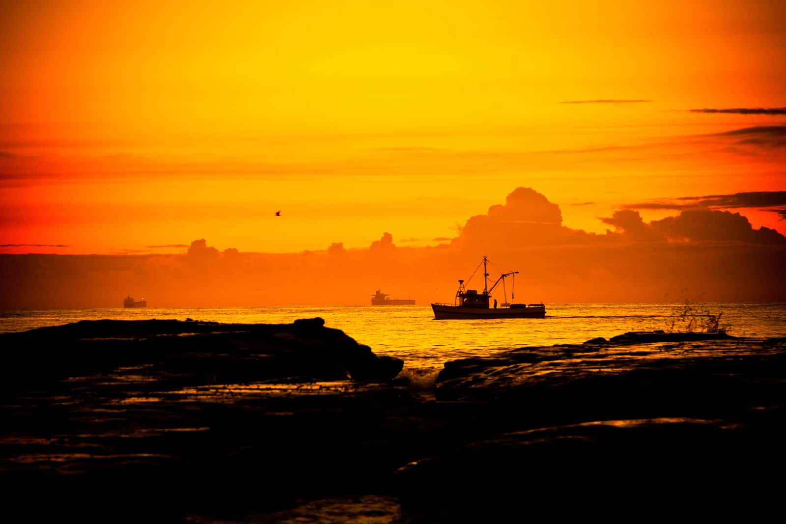 Fishing boat on the horizon at dawn in Wollongong, New South Wales, Australia. By Piccia Neri, all rights reserved
