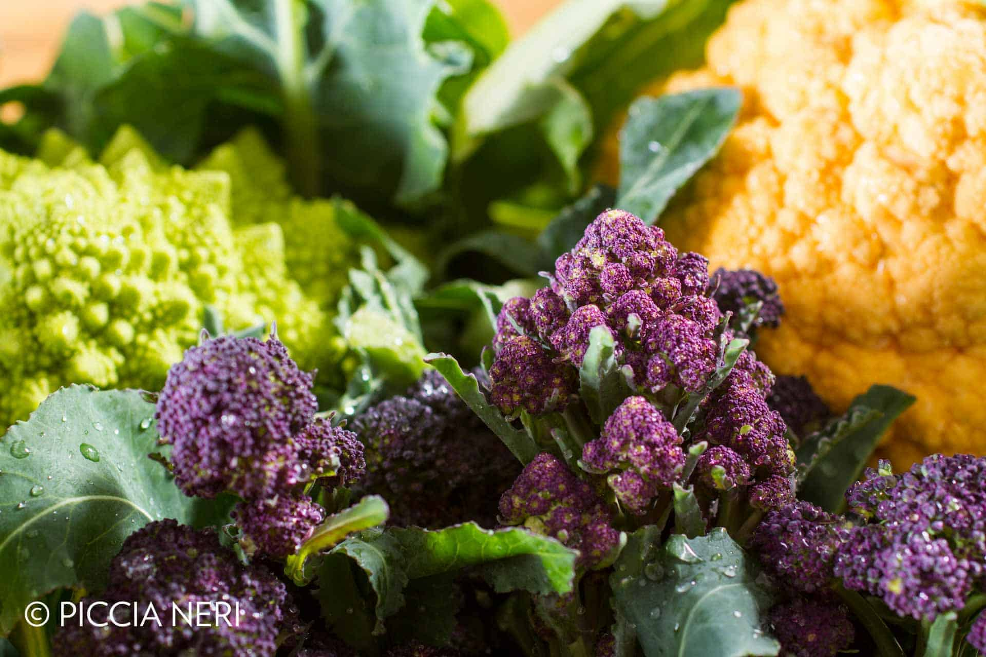 Close up on purple broccoli, with yellow cauliflower and romanesco cauliflower in the background. Wonderful contrast of complementary colours.