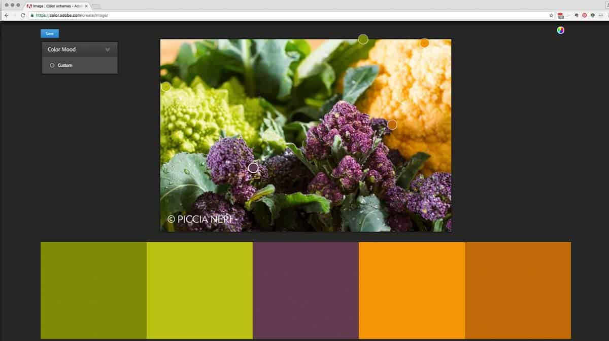 A COLOUR PALETTE CREATED FROM A PHOTOGRAPH IN ADOBE COLOUR.
